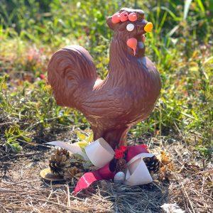 gallo romagnolo di cioccolato